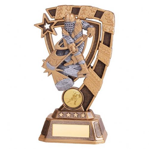 Euphoria Ice Hockey Player Award 180mm